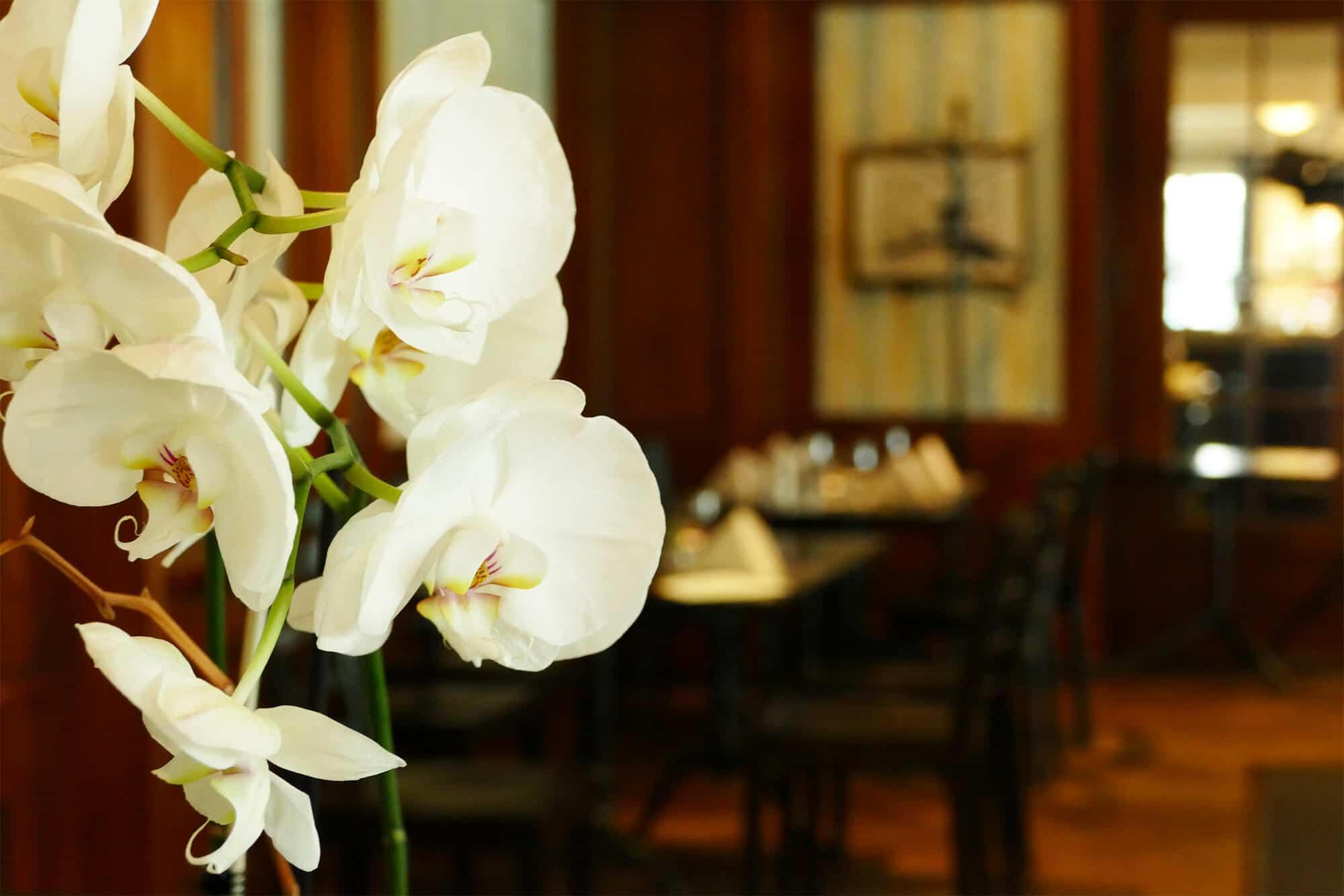Tischdeko im Restaurant